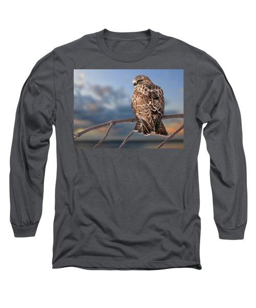Rough Legged Hawk Long Sleeve T-Shirt