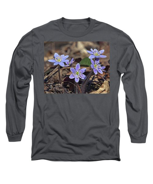 Round-lobed Hepatica Dspf116 Long Sleeve T-Shirt