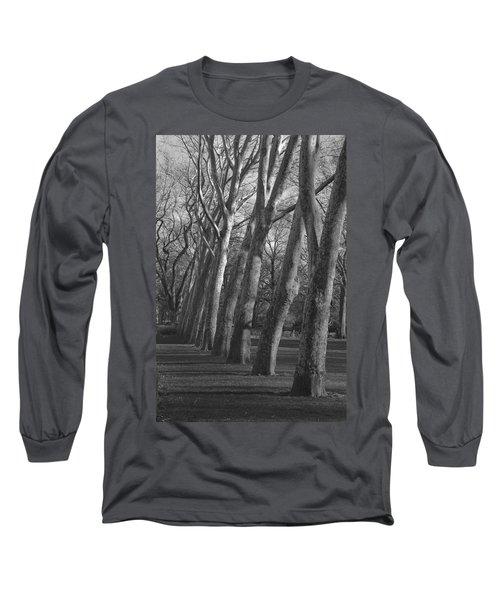 Row Trees Long Sleeve T-Shirt by Henri Irizarri