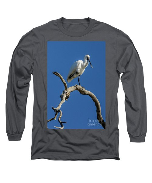 Royal Spoonbill 01 Long Sleeve T-Shirt