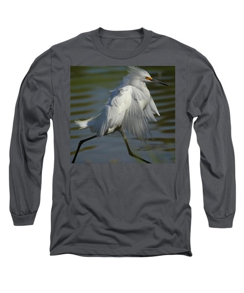 Run Snowy Run Long Sleeve T-Shirt
