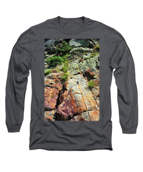 Rusty Rock Face Long Sleeve T-Shirt