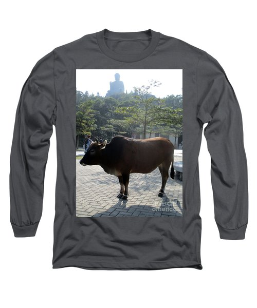 Long Sleeve T-Shirt featuring the photograph Sacred Cow 3 by Randall Weidner