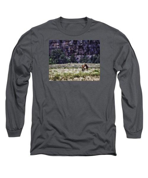 Safe In The Valley Long Sleeve T-Shirt by Elizabeth Eldridge