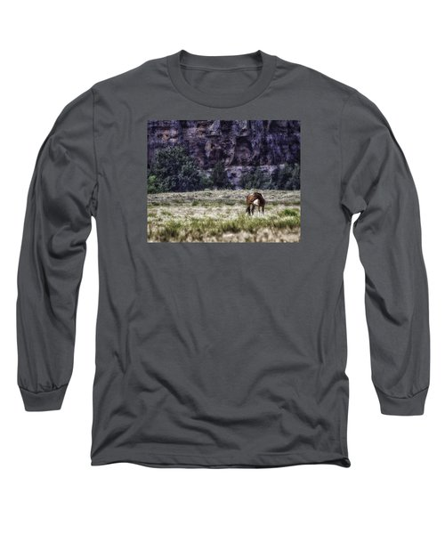 Safe In The Valley Long Sleeve T-Shirt