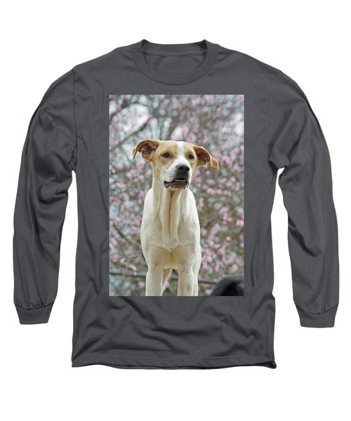 Sam In Spring Long Sleeve T-Shirt
