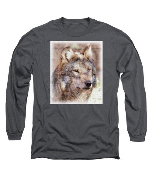 Sancho Long Sleeve T-Shirt by Elaine Malott