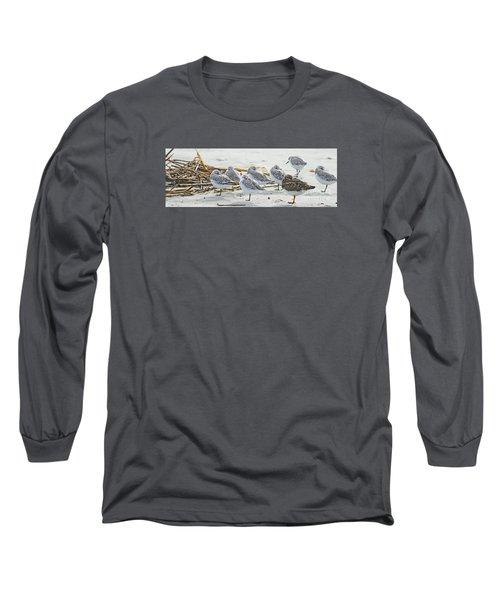 Sanderlings And Ruddy Long Sleeve T-Shirt