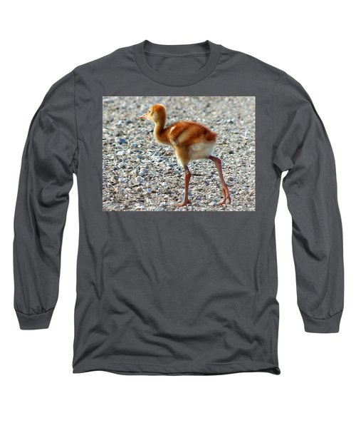 Long Sleeve T-Shirt featuring the photograph Sandhill Crane Chick 003 by Chris Mercer