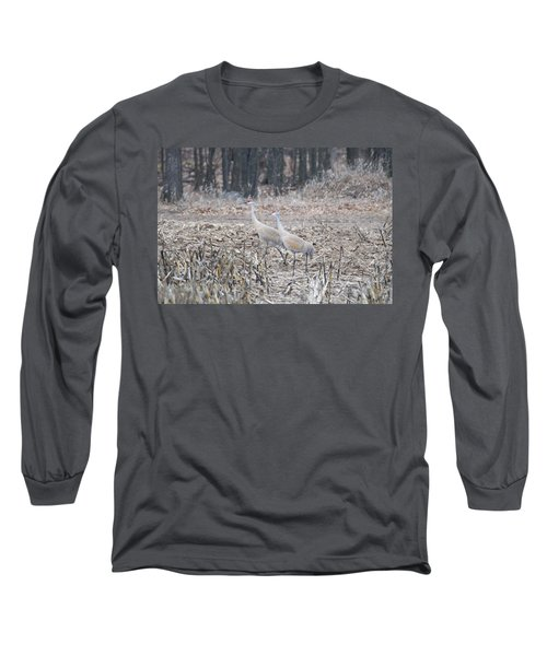 Long Sleeve T-Shirt featuring the photograph Sandhill Cranes 1171 by Michael Peychich