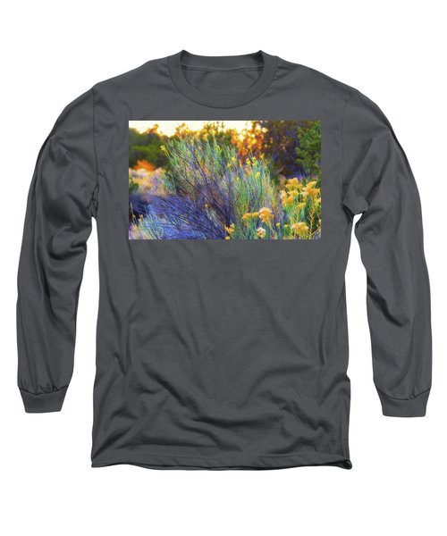 Long Sleeve T-Shirt featuring the photograph Santa Fe Beauty by Stephen Anderson