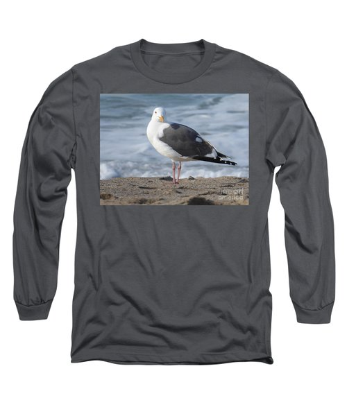 Santa Monica Seagull Long Sleeve T-Shirt