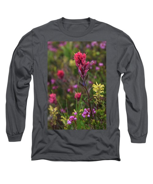 Scarlet Paintbrush Long Sleeve T-Shirt