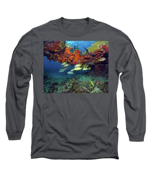 Schooling Fish At Calf Rock Long Sleeve T-Shirt