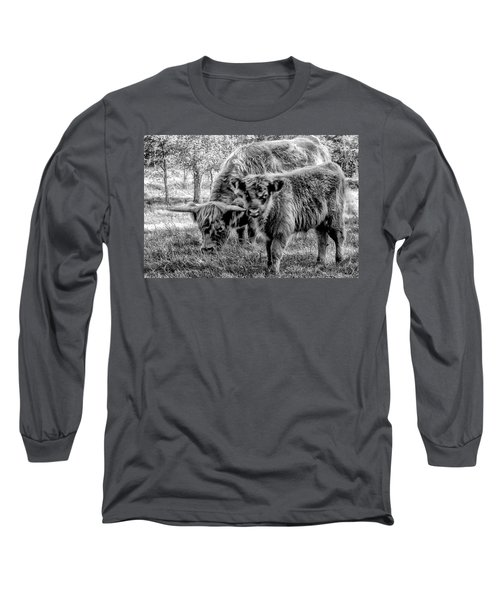 Scottish Highland Cattle Black And White Long Sleeve T-Shirt by Constantine Gregory