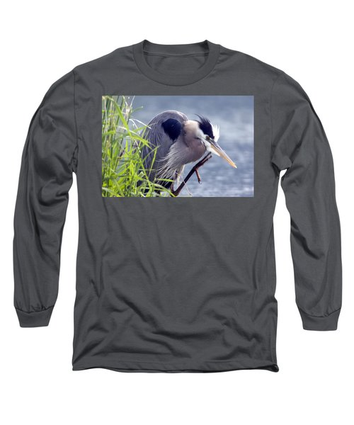Scratch The Itch Long Sleeve T-Shirt