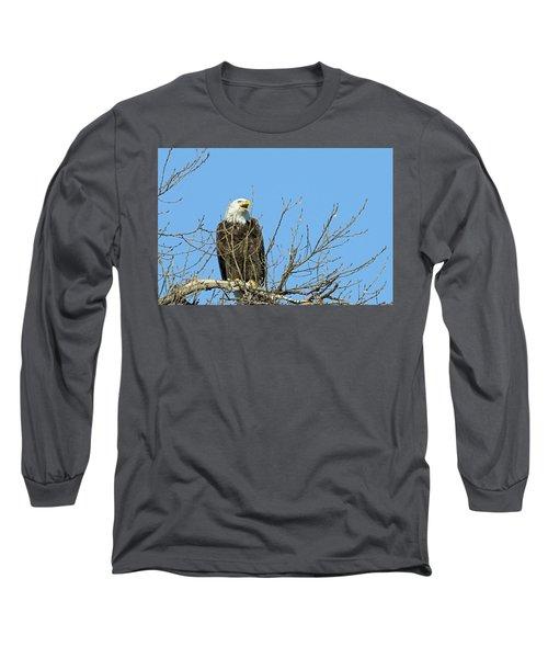 Screeching Eagle Long Sleeve T-Shirt by Brook Burling