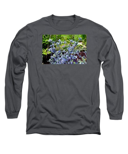 Long Sleeve T-Shirt featuring the photograph Sea Holly Blooming by Tanya Searcy