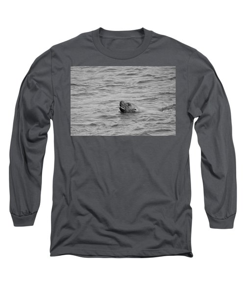 Sea Lion In The Wild Long Sleeve T-Shirt