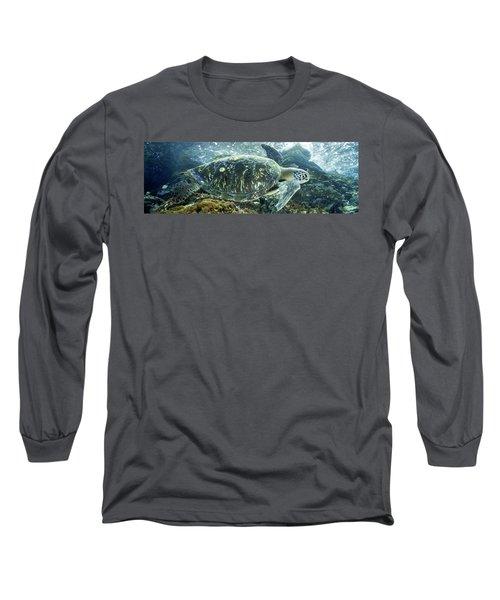 Sea Of Cortez Green Turtle Long Sleeve T-Shirt