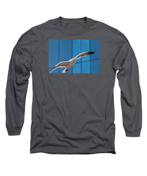 Seabird Flying On The Glass Building Background Long Sleeve T-Shirt