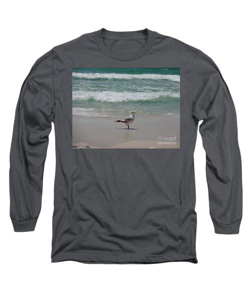 Seagull Long Sleeve T-Shirt by Megan Cohen