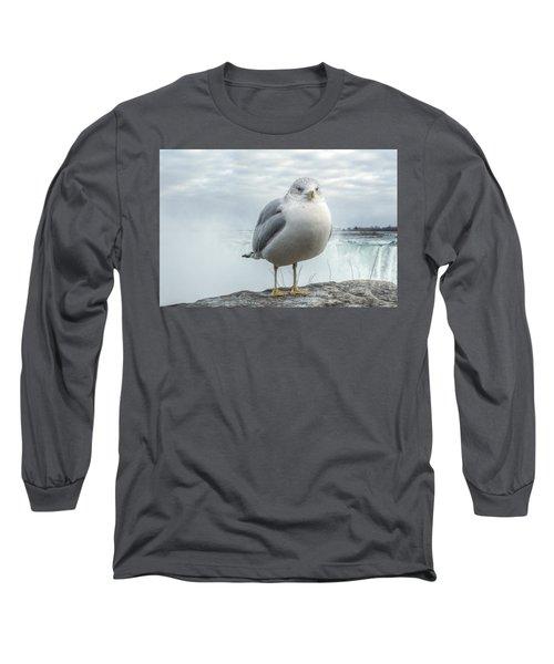 Seagull Model Long Sleeve T-Shirt