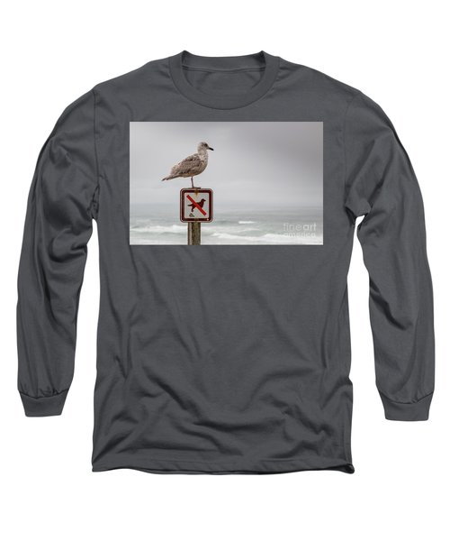 Seagull Standing On Sign And Looking At The Ocean Long Sleeve T-Shirt