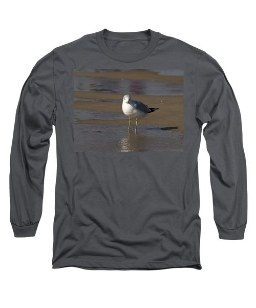 Seagull Standing Long Sleeve T-Shirt by Tara Lynn