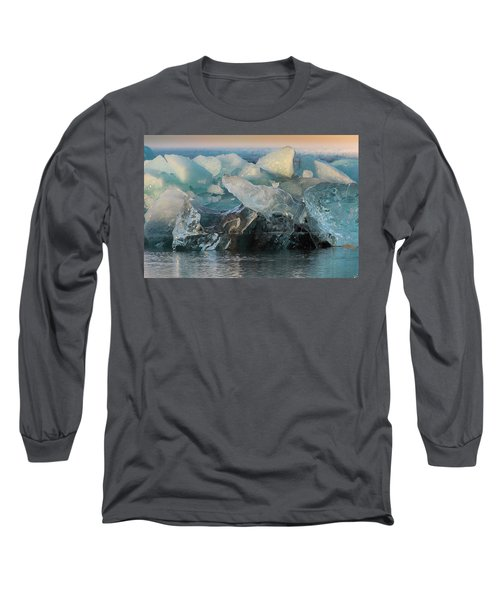 Seal Nature Sculpture Long Sleeve T-Shirt by Allen Biedrzycki