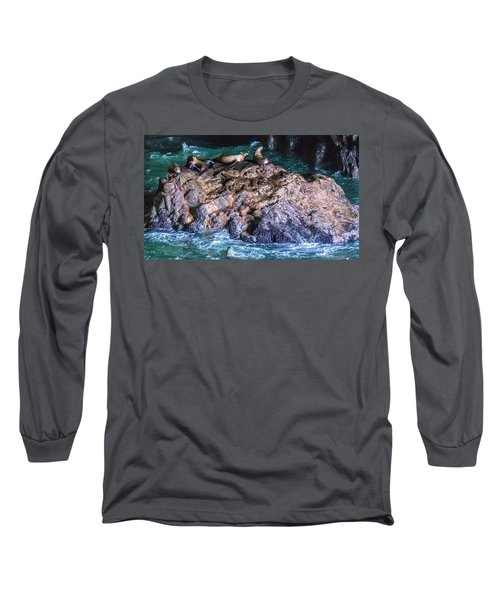 Long Sleeve T-Shirt featuring the photograph Seal  Rock by Jonny D