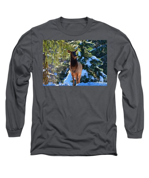 Searching For Food Long Sleeve T-Shirt