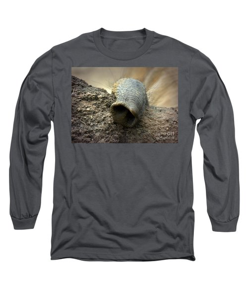 Long Sleeve T-Shirt featuring the photograph Searching by Lisa L Silva