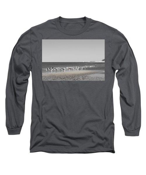 Seascape Gulf Coast, Ms F10c Long Sleeve T-Shirt