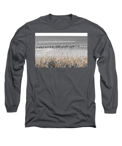 Seascape Gulf Coast, Ms F10l Long Sleeve T-Shirt