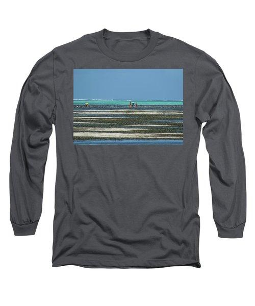 Seaweed Colectors Long Sleeve T-Shirt