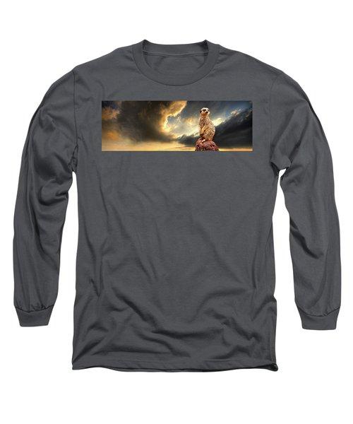 Sentry Duty Long Sleeve T-Shirt by Meirion Matthias