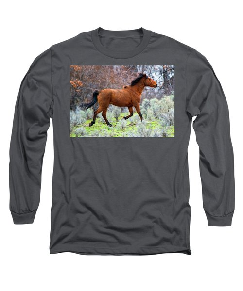 Long Sleeve T-Shirt featuring the photograph Shaggy And Proud by Mike Dawson