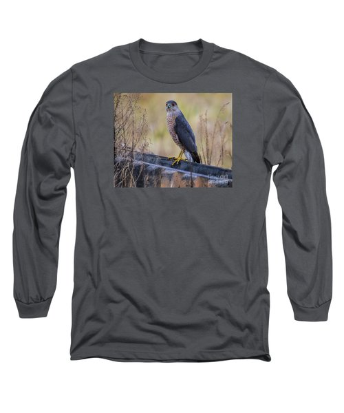 Shakerag Coopers Hawk Long Sleeve T-Shirt by Barbara Bowen