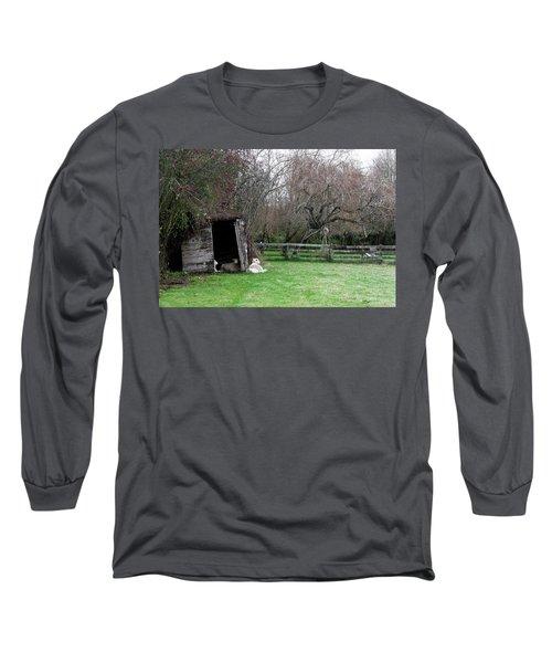 Sheep Shed Long Sleeve T-Shirt
