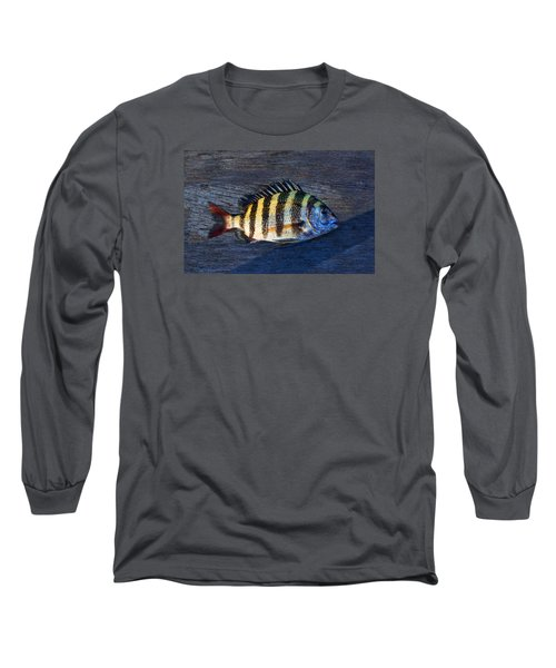 Long Sleeve T-Shirt featuring the photograph Sheepshead Fish by Laura Fasulo