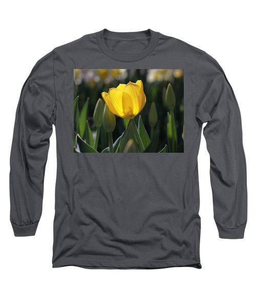 Sheer Yellow Long Sleeve T-Shirt