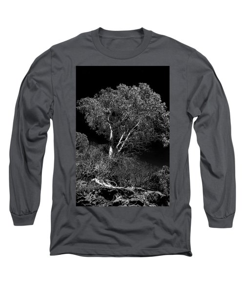 Long Sleeve T-Shirt featuring the photograph Shoreline Tree by Roger Mullenhour