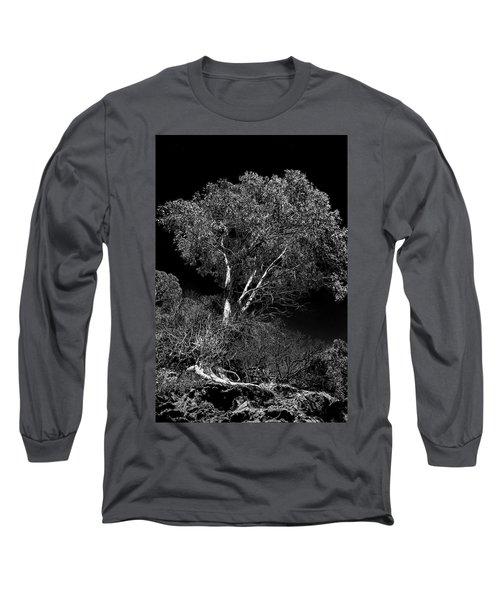 Shoreline Tree Long Sleeve T-Shirt