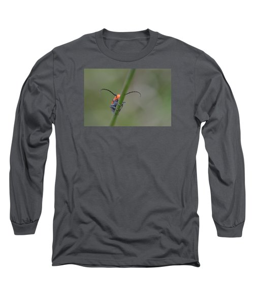 Shy Beetle Long Sleeve T-Shirt
