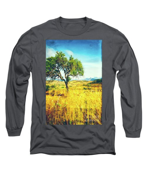 Long Sleeve T-Shirt featuring the photograph Sicilian Landscape With Tree by Silvia Ganora