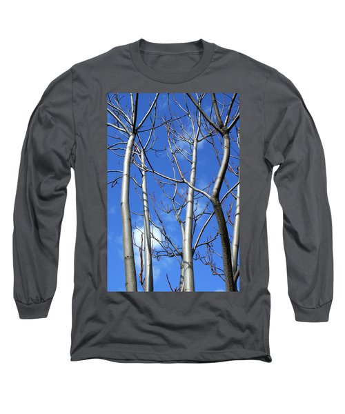 Silver Smooth Long Sleeve T-Shirt