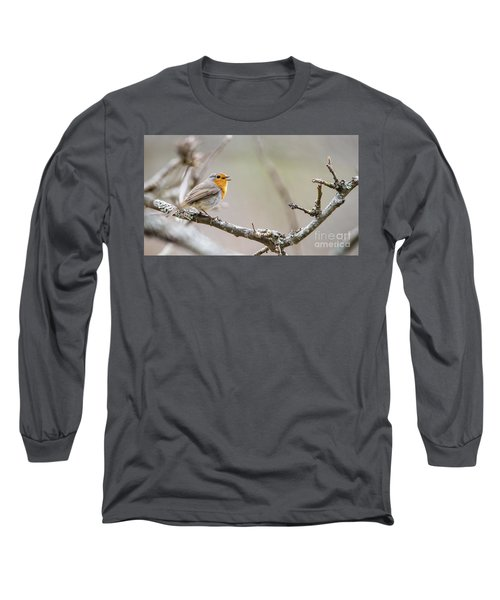 Singing Robin Long Sleeve T-Shirt by Torbjorn Swenelius