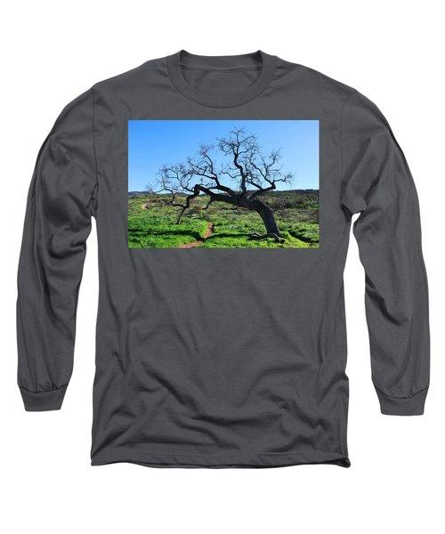 Single Tree Over Narrow Path Long Sleeve T-Shirt