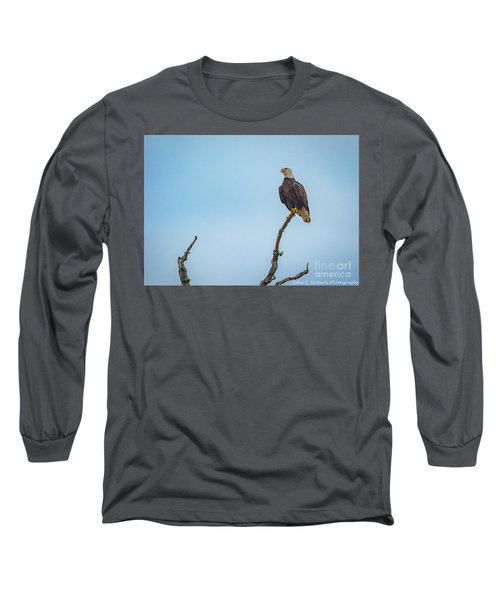 Sitting Patiently Long Sleeve T-Shirt by John Roberts